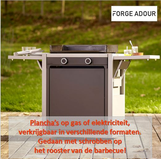 Forge Adour plancha